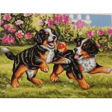 Картина-раскраска по номерам «Дружба» 30*40 см