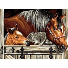 Картина-раскраска по номерам «Друзья» 30*40 см