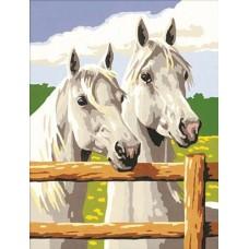 Картина-раскраска по номерам «Две лошади» 30*40 см