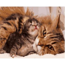 Картина-раскраска по номерам «Кошка с котенком» 40*50 см