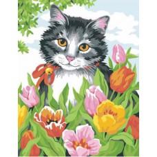 Картина-раскраска по номерам «Котенок в тюльпанах» 30*40 см