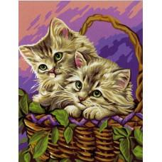 Картина-раскраска по номерам «Котята в корзине» 30*40 см