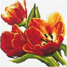 Алмазная мозаика «Красные тюльпаны» 30*30 см