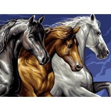 Картина-раскраска по номерам «Лошади» 30*40 см