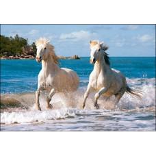 Картина-раскраска по номерам «Лошади на бегу» 40*50 см или 50*65 см