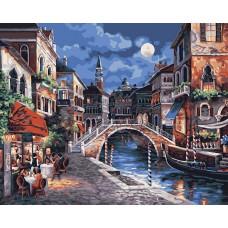 Картина-раскраска по номерам «Лунный свет» 40*50 см