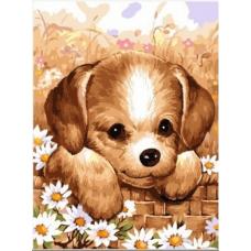 Картина-раскраска по номерам «Милый песик» 30*40 см