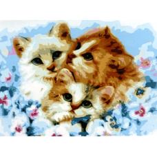 Картина-раскраска по номерам «Милые котята» 30*40 см