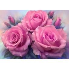 Картина-раскраска по номерам «Розовые розы» 40*50 см