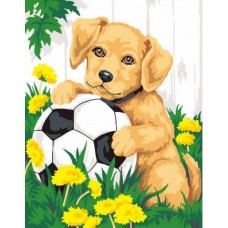 Картина-раскраска по номерам «Щенок с мячом» 30*40 см