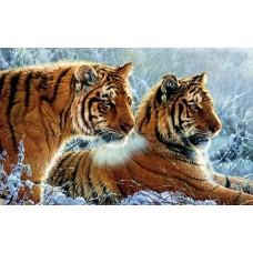 Алмазная мозаика «Тигры на снегу» 40*50 см