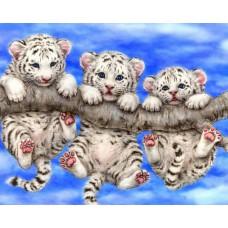 Картина-раскраска по номерам «Тигрята на ветке» 30*40 см