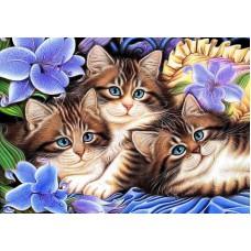 Картина-раскраска по номерам «Три котенка в цветах» 30*40 см