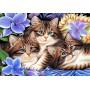Три котенка в цветах