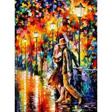 Картина-раскраска по номерам «Вечерняя прогулка» 30*40 см