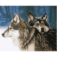 Картина-раскраска по номерам «Волчья верность» 30*40 см