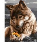 Волк хранит цветок