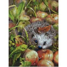 Картина-раскраска по номерам «Яблочный ежик» 30*40 см
