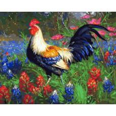 Картина-раскраска по номерам «Яркий петух» 40*50 см